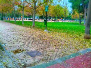 Otoño en Zaragoza, octubre 2013, Víctor Corbacho