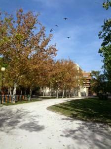 Otoño en Zaragoza - Parque del Respeto